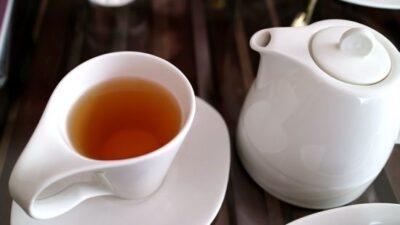 烏龍茶の飲み過ぎで吐き気や貧血に?しらないとヤバい烏龍茶の話